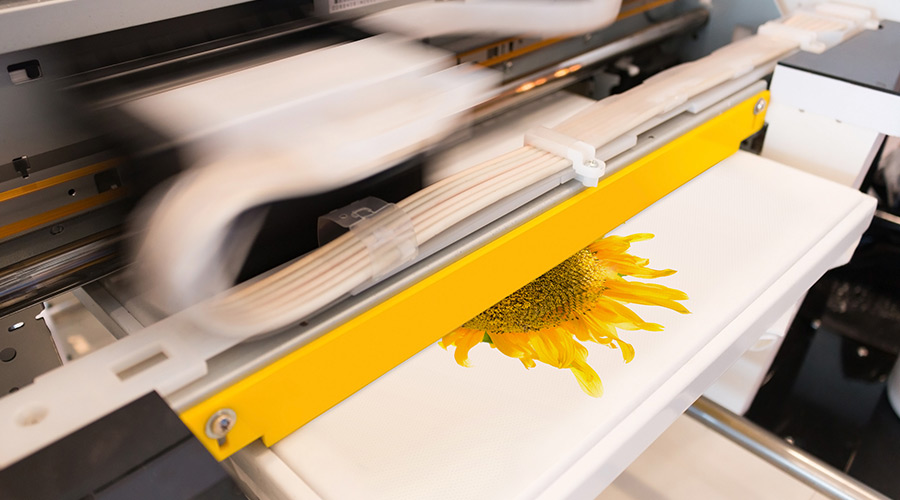 Everything you need to know about DTG printing in the UK