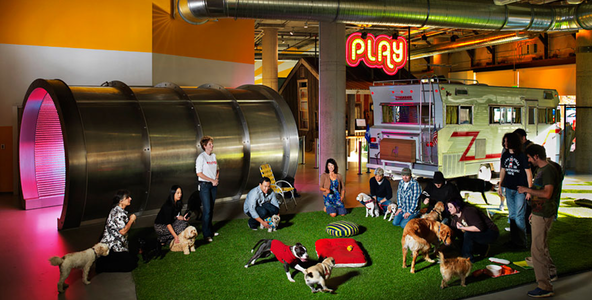Keeping your employees happy Zynga