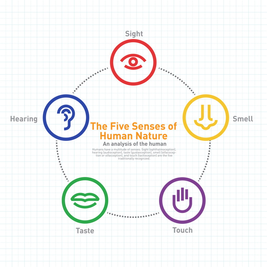 Sensory Marketing for small brands