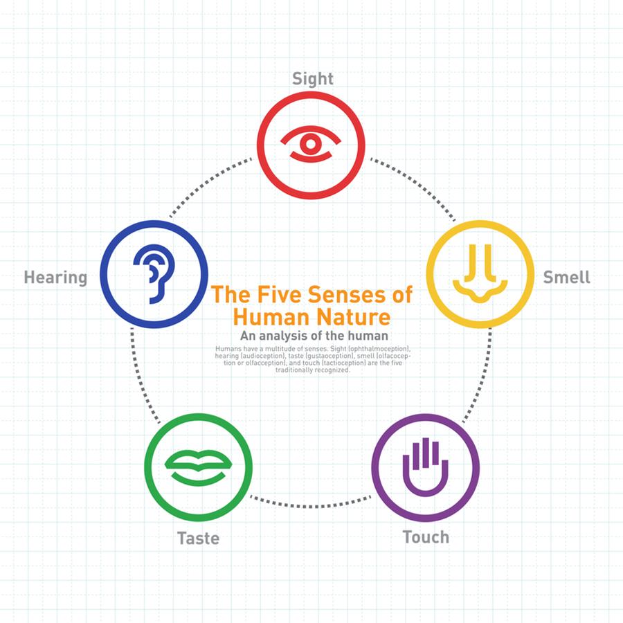 Sensory Marketing for small brands
