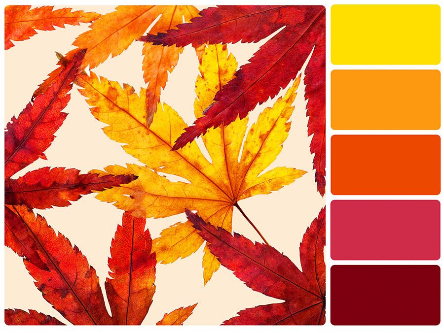 analogous-colour