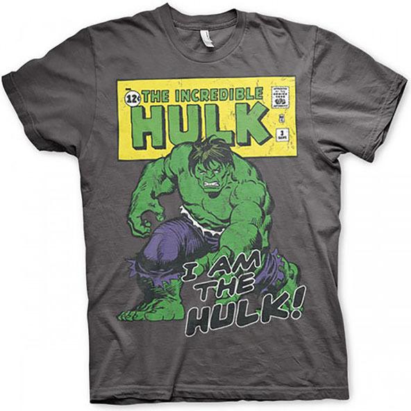 the hulk, the incredible hulk, the hulk t-shirt, the incredible hulk t-shirt, superheroes, superhero t-shirts, dtg