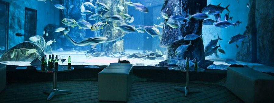 sea life aquarium, museum event venue, uk event venue, 100 best uk venues,